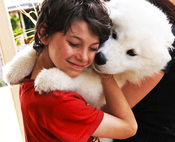 cute-dogs-hugging-humans-17