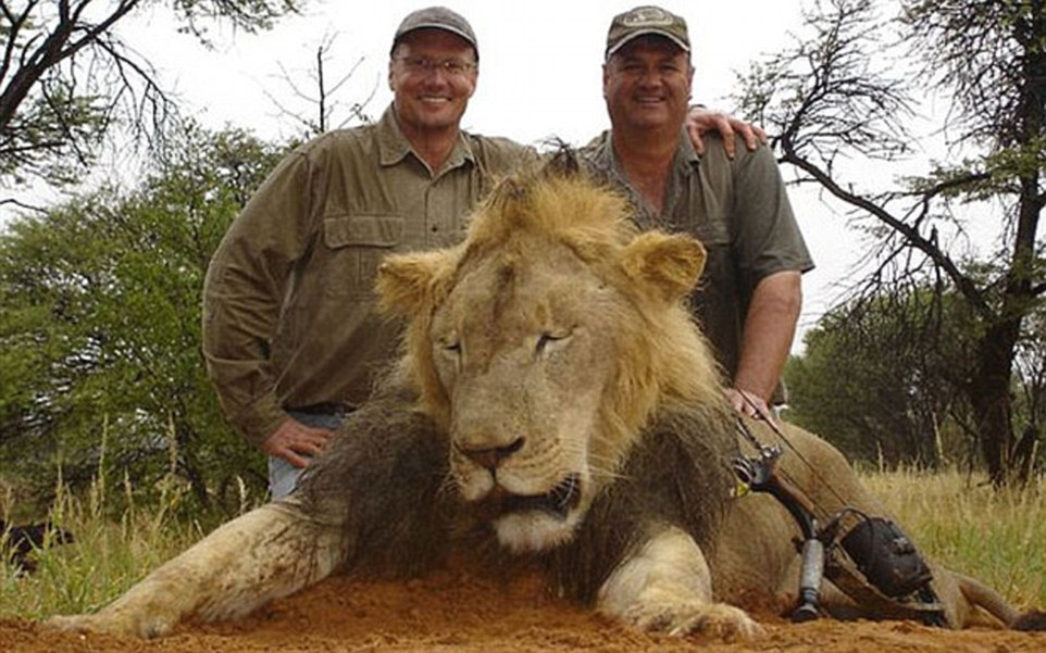 2AE7E38F00000578-3177303-Walter_Palmer_left_from_Minnesota_is_believed_to_have_shot_and_k-a-20_1438092983979