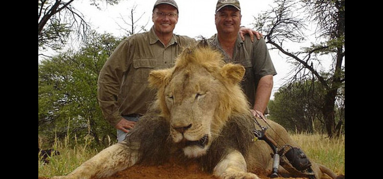 Meet the American Dentist Who Paid $55K to Kill Cecil the Lion