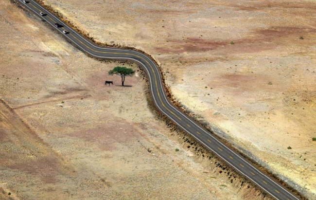 The most inspirational ways mankind has respected the natural world, in 15 images