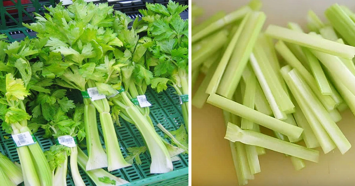 Eat Celery Once A Day, Here's The Effect On Your Body After Just One Week