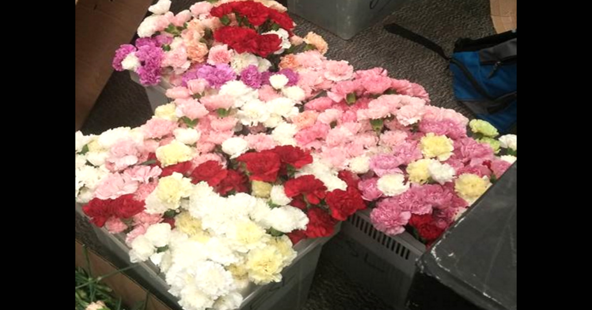 High School Boy Buys Enough Flowers To Hand Out To 834 Girls At School
