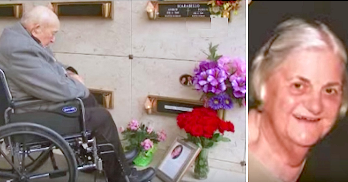 Old Man Visits Deceased Wife's Grave And Notices Her Flowers Keep Changing To Her Favorite Color